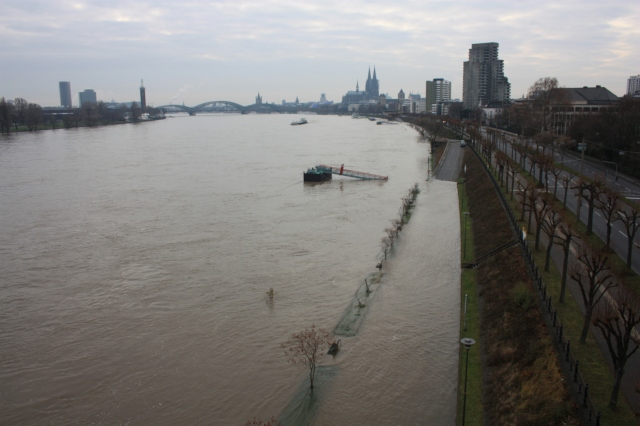 The Swollen Banks of the Rhine