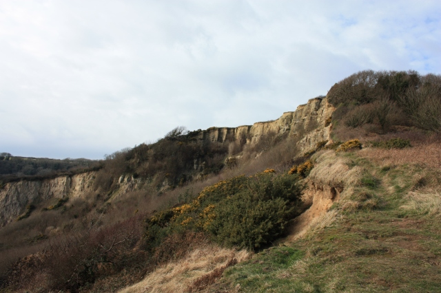 Crags at Hastings Country Park