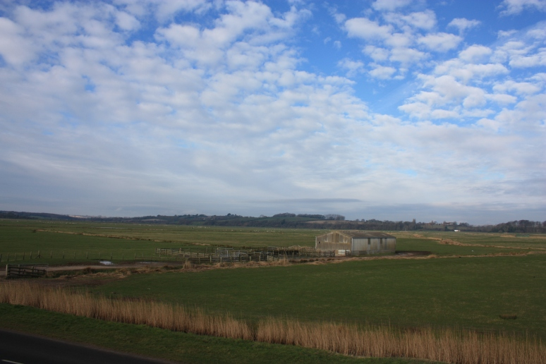 Farmland at Pett Level