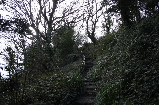 Steps in Hastings Country Park