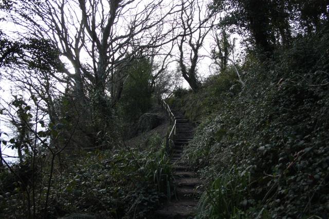 Steps in Hastings Country Park