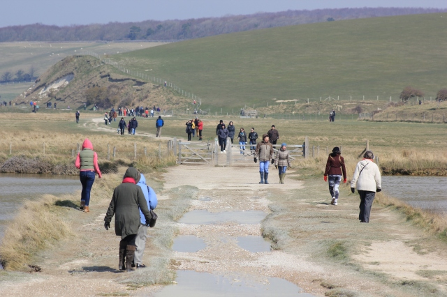 Pedestrian Traffic from Cuckmere Haven to Exceat Bridge