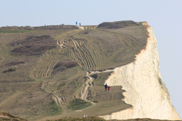 Looking Back from Seaford Cliffs