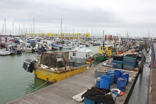Working Harbour of Brighton Marina