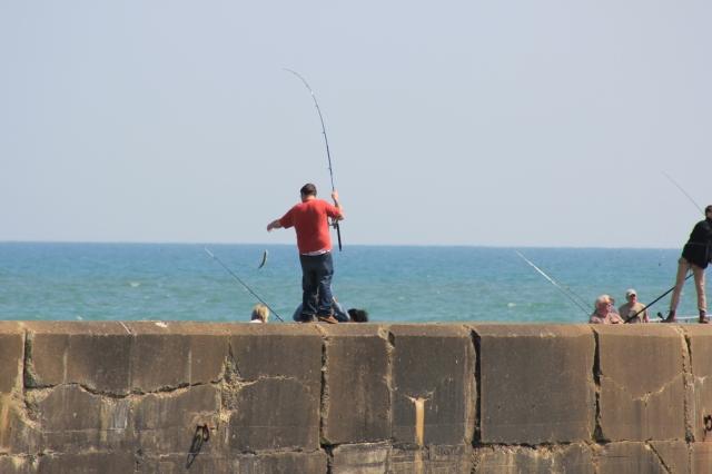 Fishing on Shoreham Harbour Arm