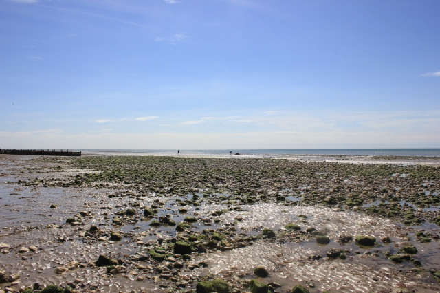 Low Tide at Ferring