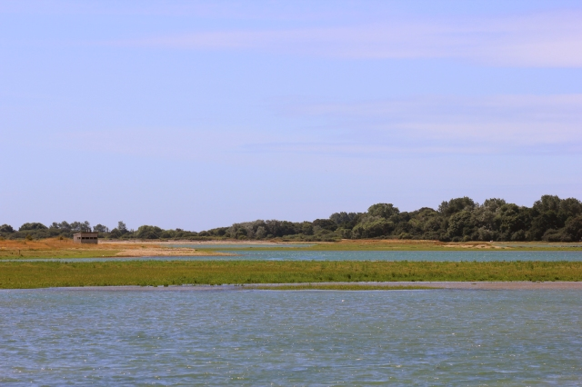 Bird Hide at Pagham Harbour