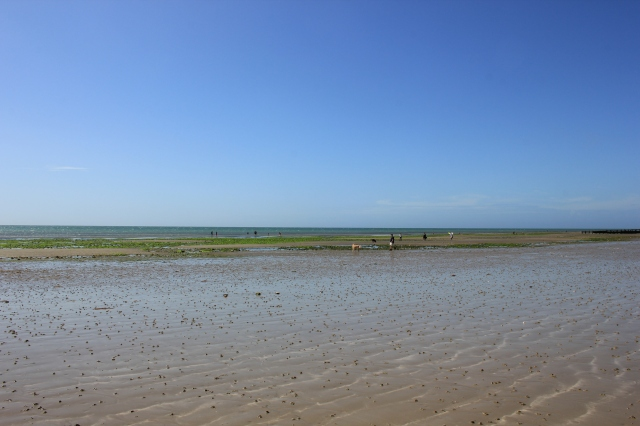 Beach at Atherington