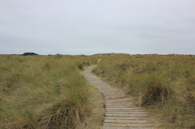 Boardwalk at East Head