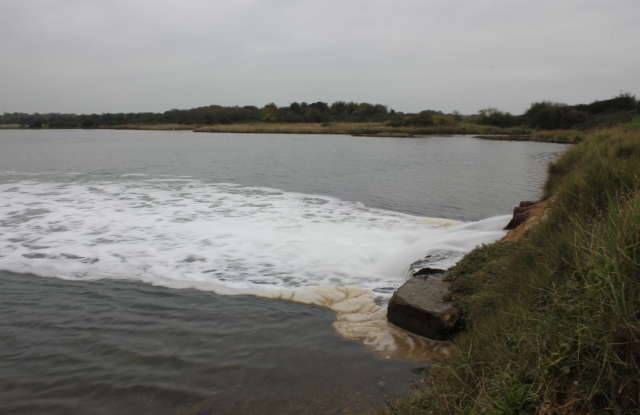 Waters of Emsworth Channel Discharging into the Great Deep