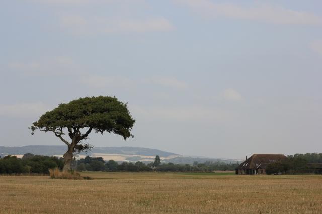 Cobnor Farm