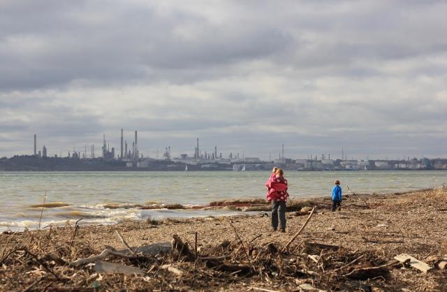 Litter-Strewn Shoreline
