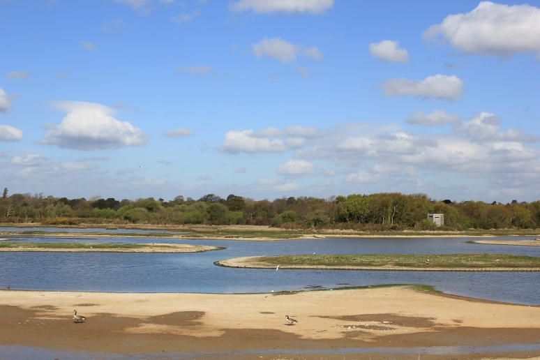 Lymington & Keyhaven Marshes