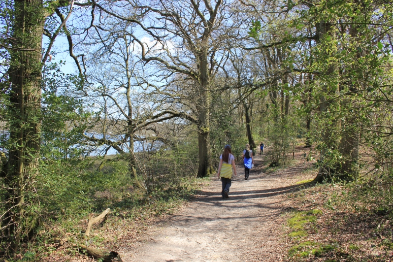 Woodland Path from Beaulieu to Buckler's Hard