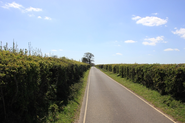 Road South of Buckler's Hard