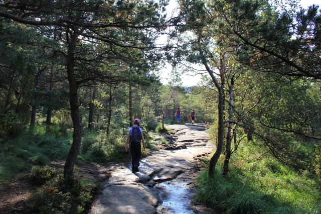 Preikstolen Trail