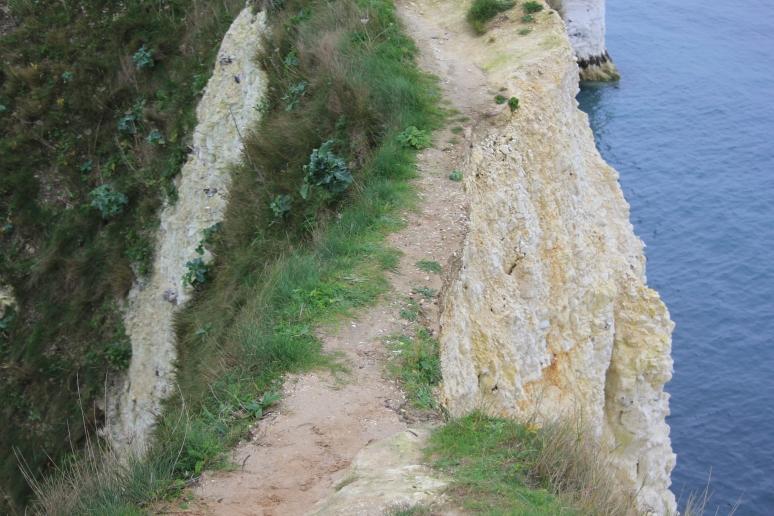 Track towards Old Harry Rocks