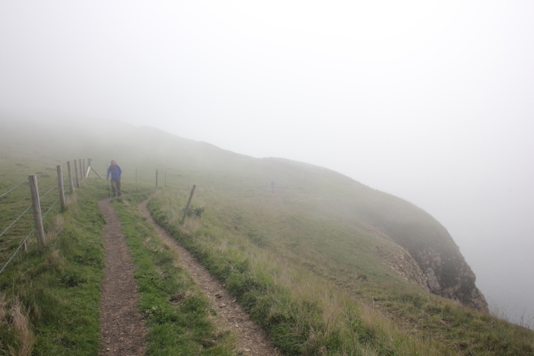 The Path to St Aldhelm's Head